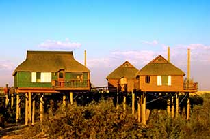 Dunes in front of Bungalows